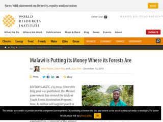 Malawi is Putting its Money Where its Forests Are