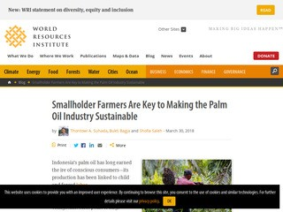 Smallholder Farmers Are Key to Making the Palm Oil Industry Sustainable