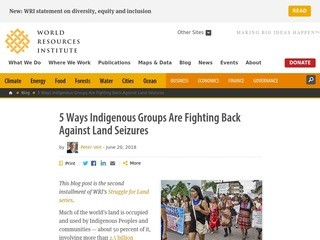 5 Ways Indigenous Groups Are Fighting Back Against Land Seizures