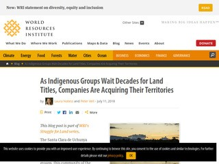 As Indigenous Groups Wait Decades for Land Titles, Companies Are Acquiring Their Territories