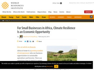 For Small Businesses in Africa, Climate Resilience Is an Economic Opportunity