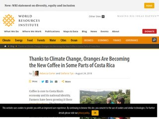 Thanks to Climate Change, Oranges Are the New Coffee in Costa Rica