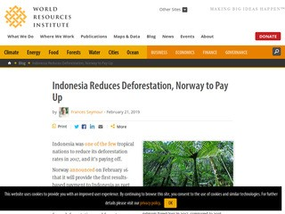 Indonesia Reduces Deforestation, Norway to Pay Up