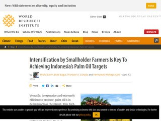 Intensification by Smallholder Farmers Is Key To Achieving Indonesia's Palm Oil Targets