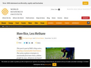 More Rice, Less Methane